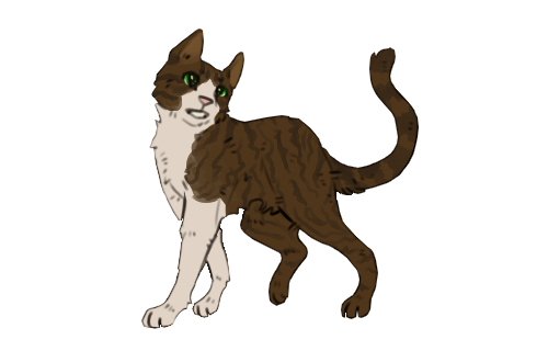 Warrior Cats - Life is Strange - Seite 8 11039375_1AfWfWJwjKHB5Aa
